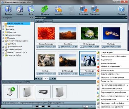 img_screenshot